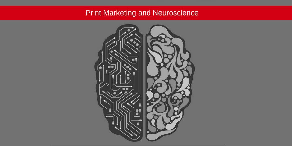 Marketing and Neuroscience