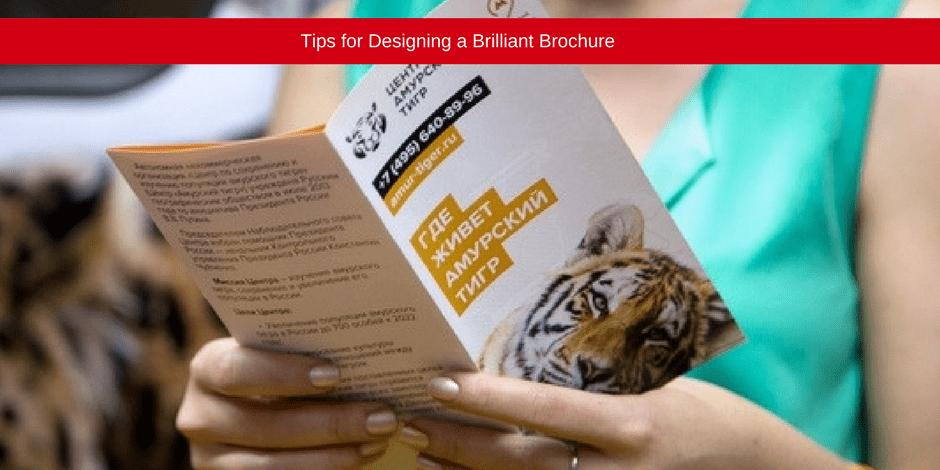 Tips for designing a brilliant brochure